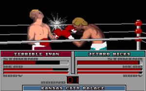 TV Sports Boxing