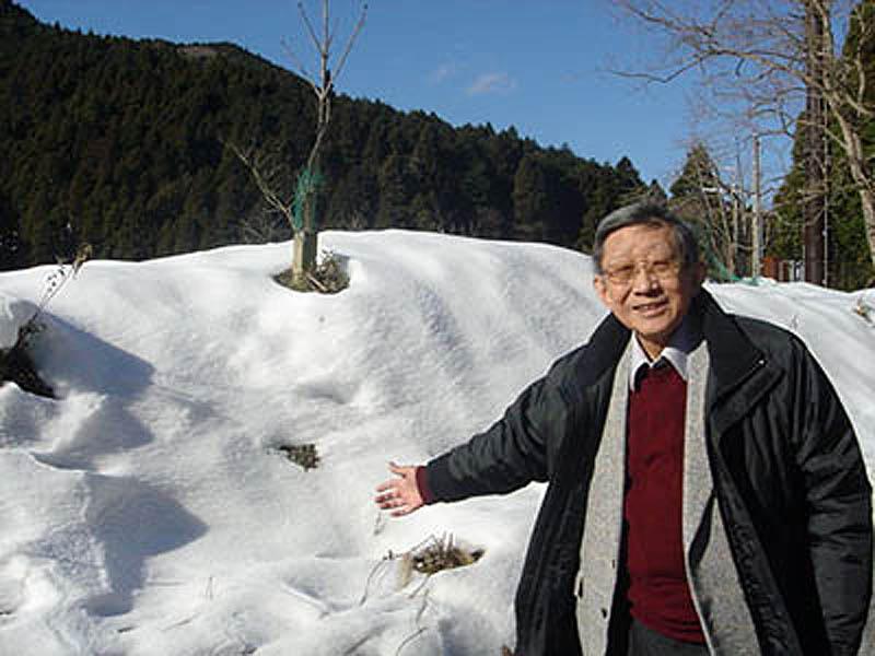 Sugiyama 5