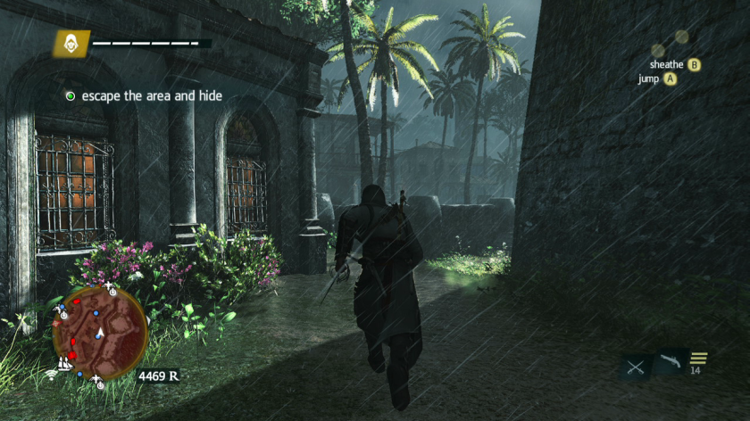 Assassin's Creed Black Flag pic 3