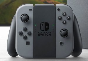 joy-cons_in_grip