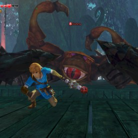 hyrule-warriors-pic3